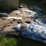 Gaithersburg roof removal & Shrub and ground protection